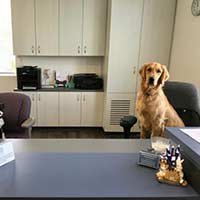 Front Office Support Staff